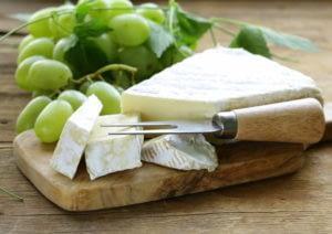 camembert-mold-cheese